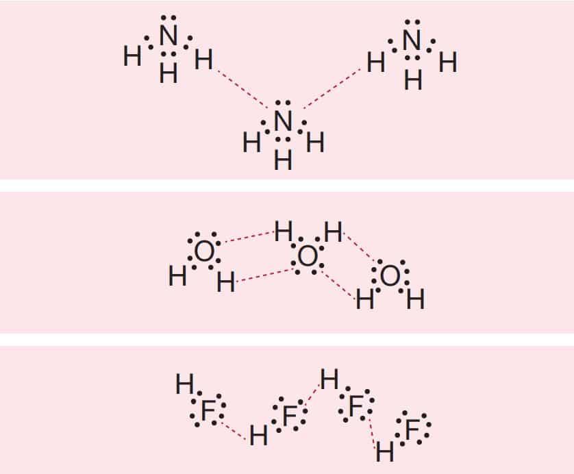 Aynı tür moleküller arasında oluşan ( ile gösterilen) hidrojen bağları