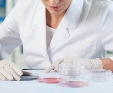 Biyokimya laboratuvarında inceleme yapan bir kimyager