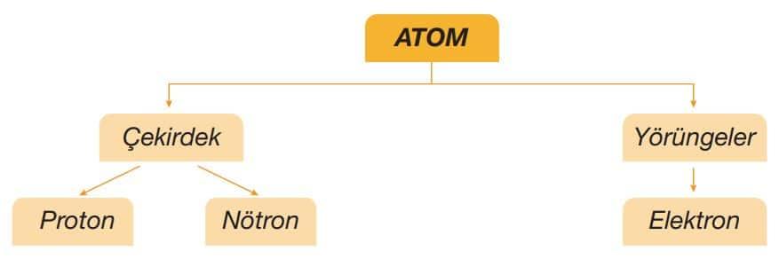 Atomu oluşturan tanecikler ve bulundukları bölgeler