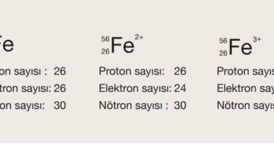 Demir element atomu ve iyonları üzerinde atom altı tanecik sayıları